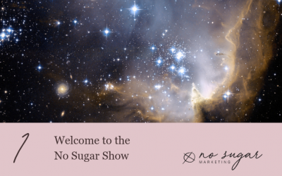 Episode 1: Welcome to the No Sugar Show