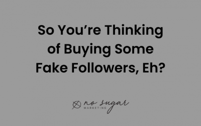 So You're Thinking of Buying Some Fake Followers, Eh?